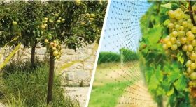 Swissinno Natural-Control netting 4x5m bird protection net deterrent 1 pc. / Kat.№SW1257000